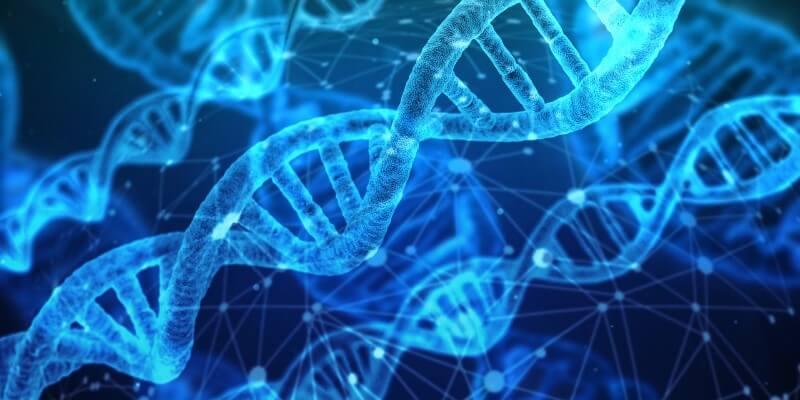 遺伝子検査のジーンライフジェネシス2.0に挑戦しました!2