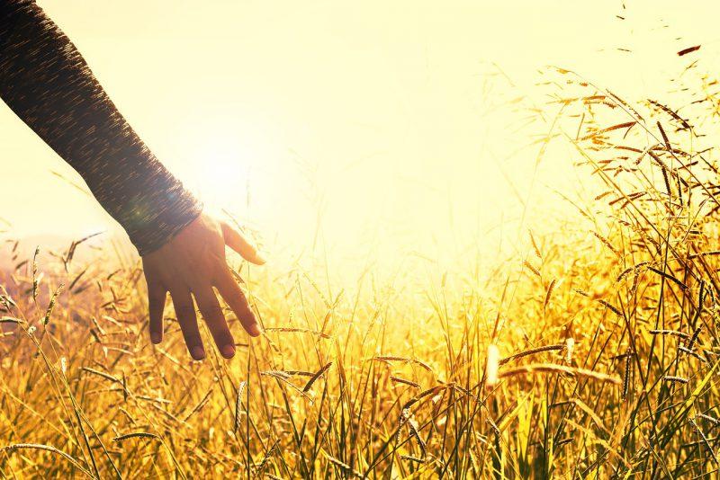 手や指先の乾燥による辛いひび割れ対策3ステップを押さえる!2